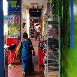 Little India lady in blue