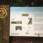 Nong Phak Chi Nature Trail in Khao Yai Forest Thailand