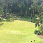 Skoleklasse der arbejder i Botanical Garden Singapore