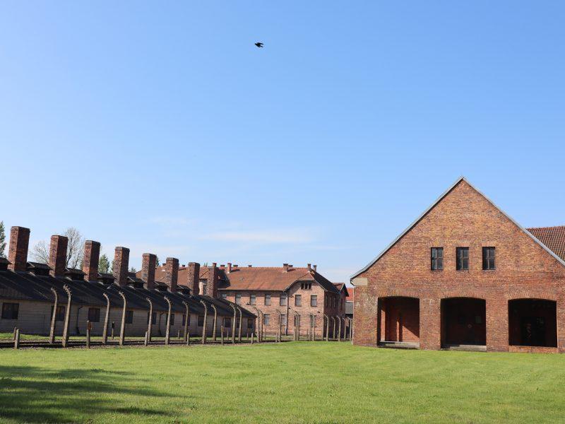 Der er gratis entre til Auschwitz koncentrationslejr