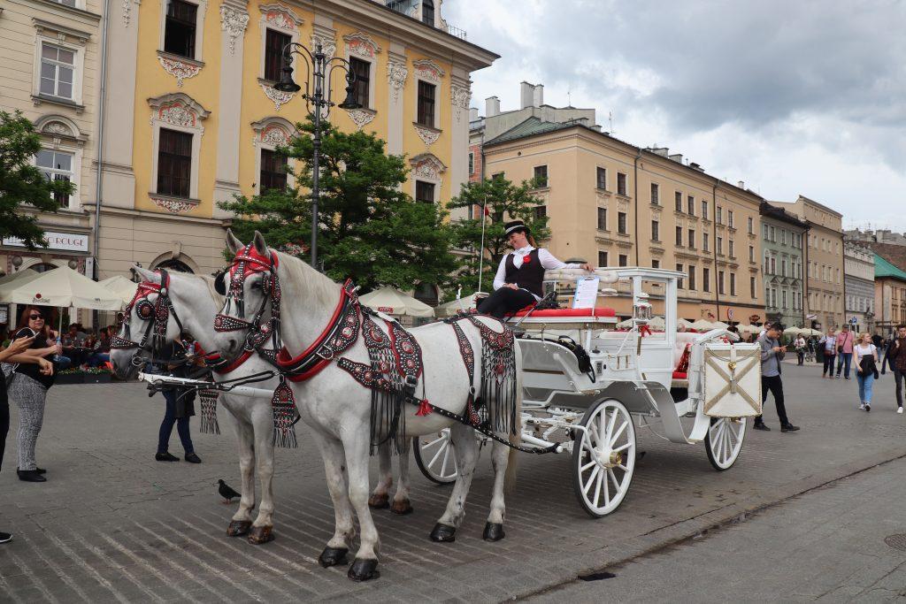 Hestevognskørsel på det gamle torv Rynek